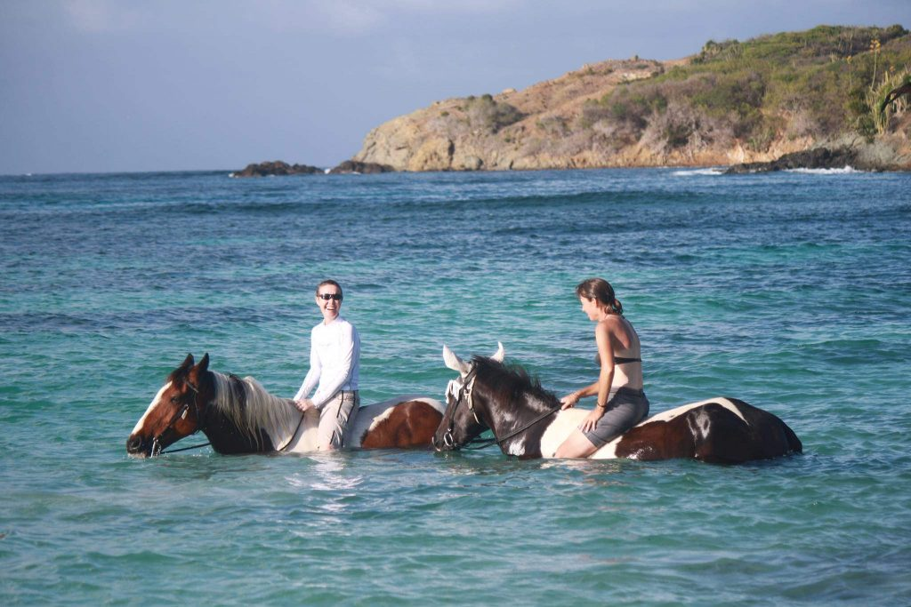 Have you always wanted to ride a horse out into the sea? So, what's stopping you?
