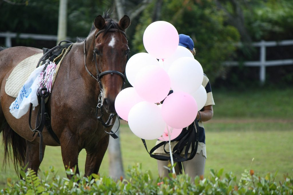 If you wish to include things like balloons in your utility dressage test, make sure you practice before a child is on board.
