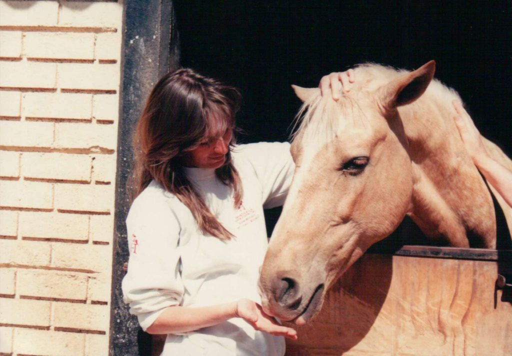 Golden Marble, my very first horse, the one who started it all.)
