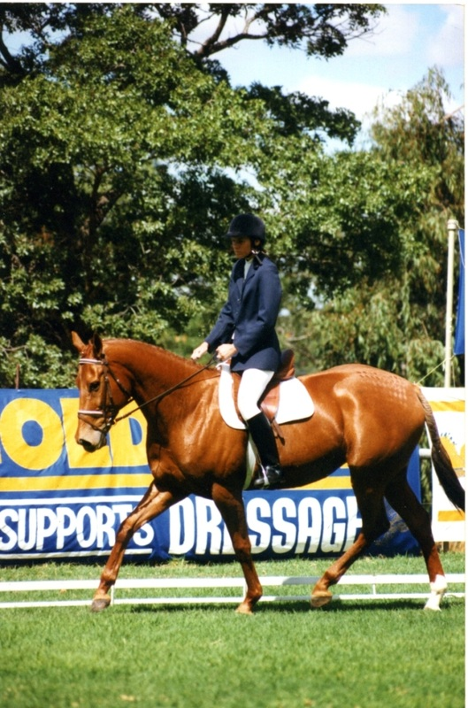 Where do the slow racing rejects go? Melody Fair, a lovely lady who was bred for racing and didn't get there, because a fabulous all rounder who evented, show jumped and did dressage