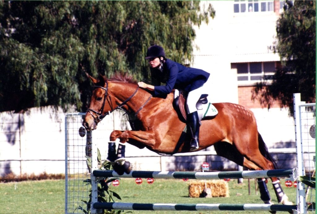 Cardiff Park – a Thoroughbred who raced for a couple of years before becoming a happy, healthy, sound riding horse and show jumper
