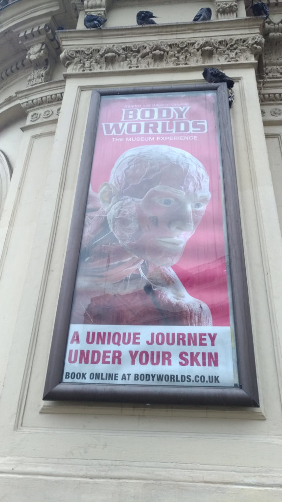 Body World Exhibition