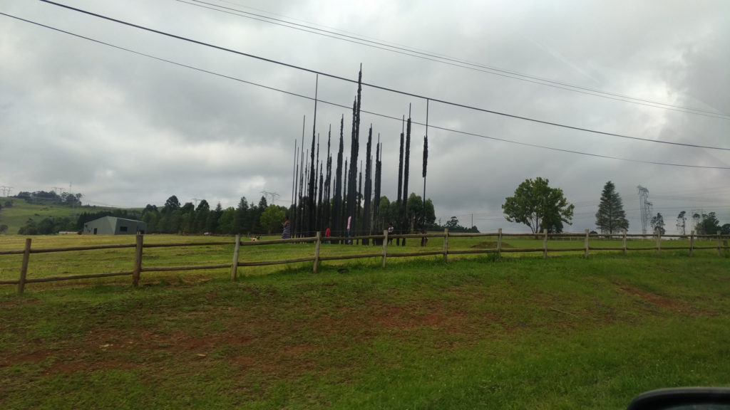 The Sculpture from a distance