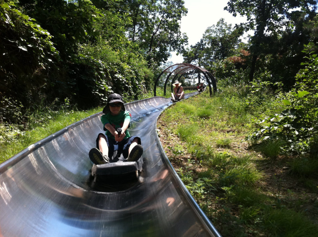 Tobogganing (off the Great Wall of China) teaches you about committing to the force of direction…