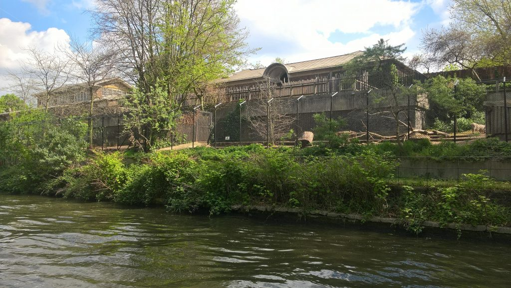 The back of London Zoo, as seen from the canals