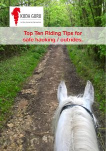 Top Ten Riding Tips for safe hacking/outrides